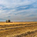 Священник освятил поля фермерских хозяйств