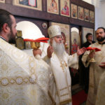 Божественная литургия в храме во имя святителя Тихона, епископа Воронежского, Задонского чудотворца, г. Саратова